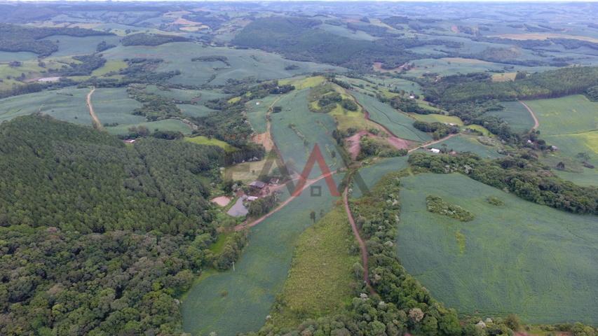 Excelente área para agricultura com 68132.00m², Linha São Paulo, RENASCENCA - PR