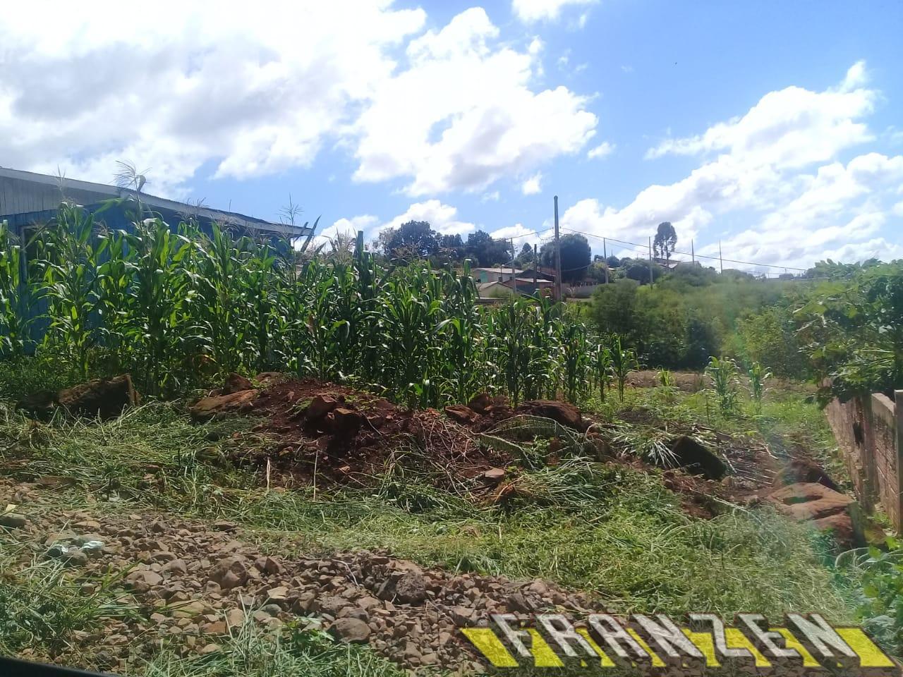 Terreno à venda, LOTEAMENTO BEIRA RIO - PLANTA F, QUEDAS DO IGUACU - PR