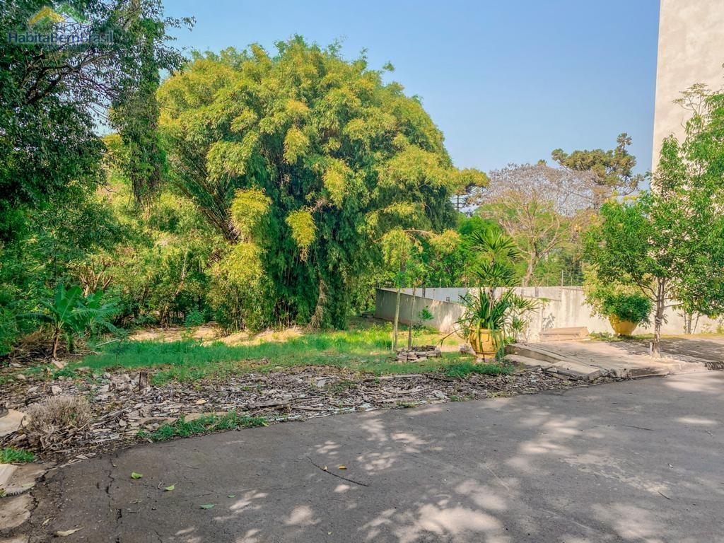 Chácara à venda,12000.00m², JARDIM CONCORDIA, TOLEDO - PR