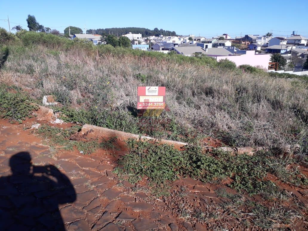 Terreno à venda, ARAUCARIA PARK, VITORINO - PR