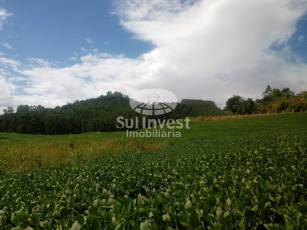 Propriedade Rural em Linha Santa Cruz - Ita.