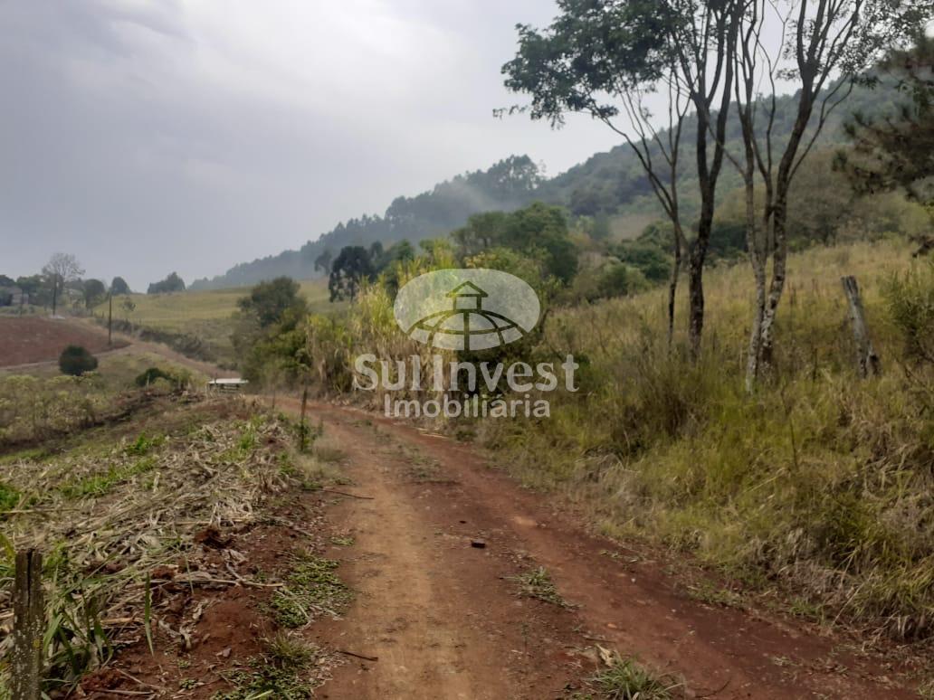 Propriedade rural à venda em Linha Borboleta Alta, ITÁ - SC