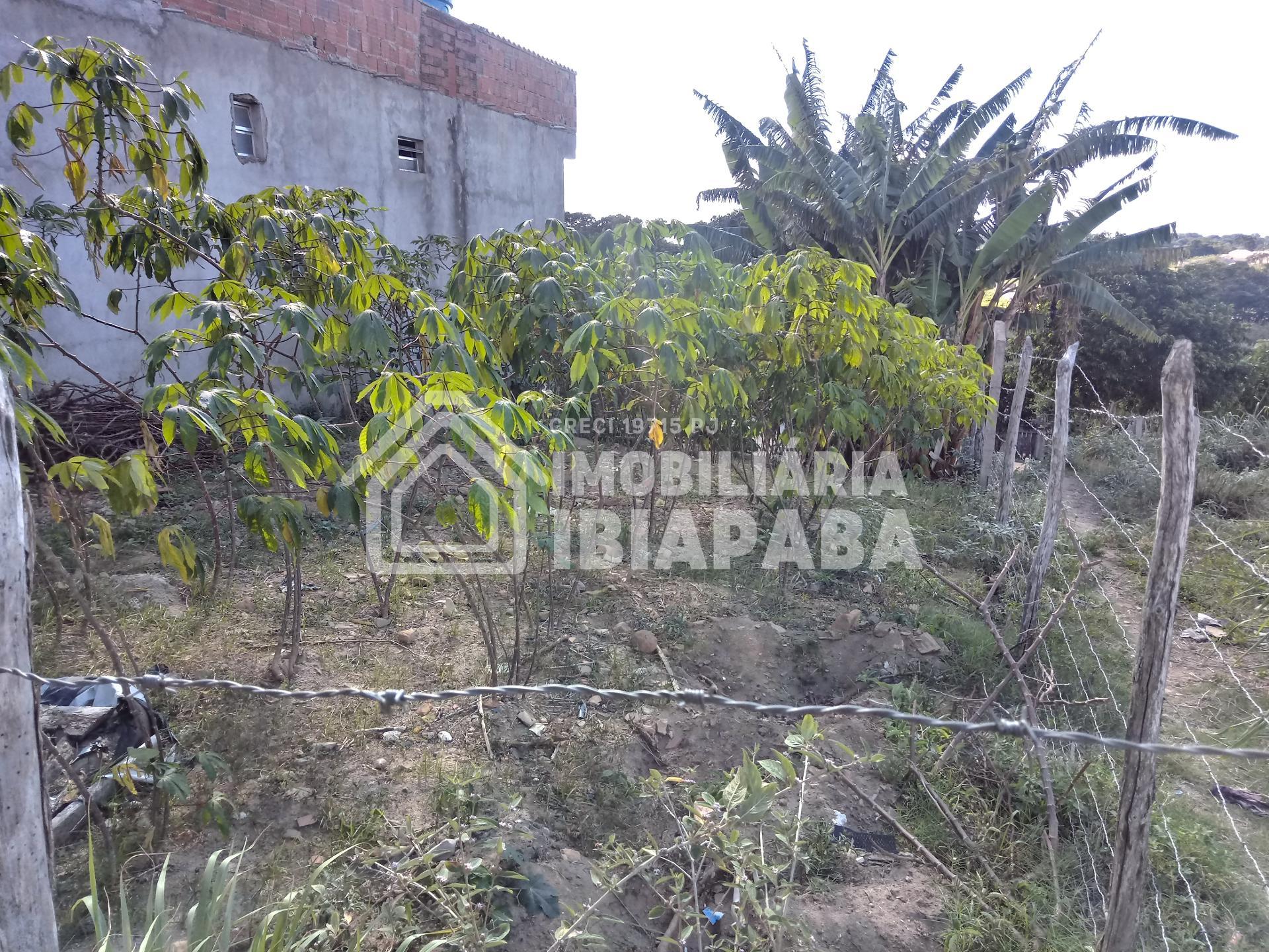 Terreno à venda, CORRENTE, SAO BENEDITO - CE